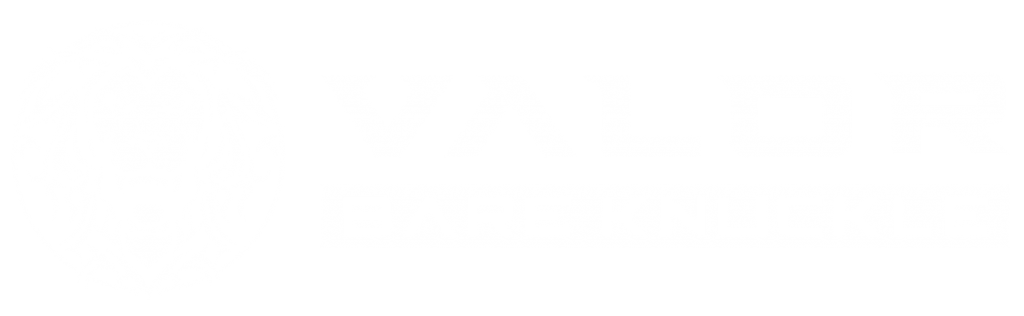 Valor Bare Knuckle Logo
